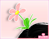 ♡ Daisy Flower P!