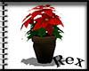 [Rex]Christmas Flower