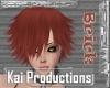 KAI Brick Kai