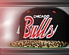 Derivable Bulls SnapBack
