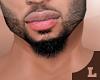 Beard^D.O.P. E .01