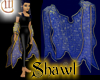 Shawl - Blue and Gold