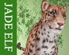 [JE] Leopard Pet