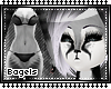 .B. Racco furry 1