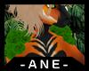 [Ane] Cade Shoulders