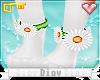 *D* Daisy's Leg Daisies