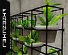 ϟ Plant Divider