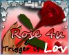 Trigger Love Rose
