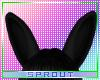 ⓢ BunBun Ears - Onyx