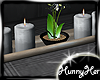 Studio Apt Candle
