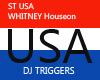 ST WhitneyHouston STB DJ