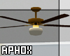 Ceiling Fan (with lamp)