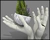 +Garden Cement Vase+