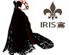 burgundy lace dress IRIS