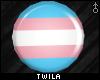 ☾ Trans Pride Plugs