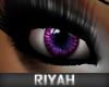 !R  Celebrity Eyes VIOLT