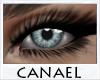 [CNL]Eye unisex sorrel 3