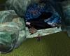 Cave R2