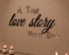 True Love Story 3D