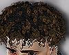 .z. Jr Curls