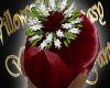 WF>Jasmine~Ruby Red