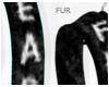 (Fur|Fear-Black