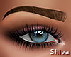 S. Olia Brows Chestnut