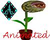 Ama{FeedMePlant animated