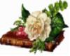 book of love flower