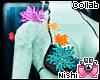 [Nish] Sea Top Coral