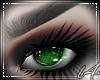 [L4] Ruby Eye