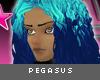 [V4NY] Pegasus Bluemetal