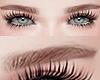 眉毛. Eyebrow Brown.