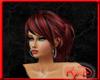 KyD Auburn Exja2 Hair