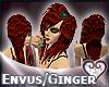 [wwg]Envus-raven/ginger