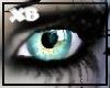 XB - TEAL BLUE EYES