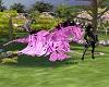 WKT /Pink Pegersus