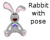 rabbit with pose