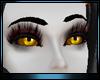 M * Karnal Eyes v2