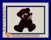 (CR) HugMe Bear - Brgdy