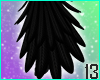 Crow Tail Feathers
