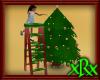 SW Christmas Ladder