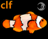 [clf]Clownfish Particles