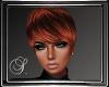 (SL) Sibi Copper