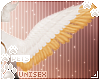 [Pets] Evy | wings v1