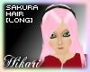 [Naruto]Sakura Long Hair