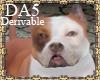 (A) Pit Bull Dog Pet