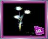 (IA)GLOWROSE(RAINBOW)