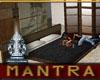 Artist's Loft Tatami Bed