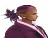 Hot pony tail purple str